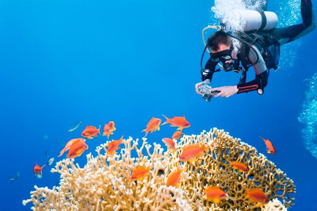 shooting underwater
