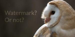 watermark 5